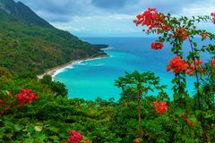 Scenic natural wild landscape with rocky mountains overgrown dense green jungle tree, palm and clear azure water of sea ocean stock photos