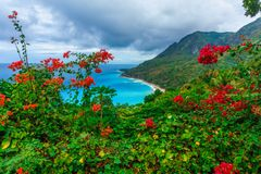 Scenic natural wild landscape with rocky mountains overgrown dense green jungle tree, palm and clear azure water of sea ocean royalty free stock photos