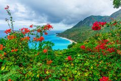 Scenic natural wild landscape with rocky mountains overgrown dense green jungle tree, palm and clear azure water of sea ocean royalty free stock photography