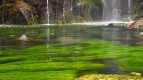 Scenic nature of beautiful waterfall and pool of fresh water with green seaplant