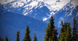 Scenic Nature Washington State - Olympic National Park.  stock photography