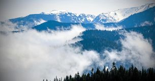 Scenic Nature Washington State - Olympic National Park.  royalty free stock image