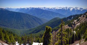 Scenic Nature Washington State - Olympic National Park.  stock photo