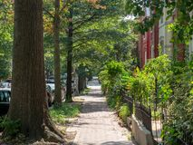 Scenic neighborhood sidewalk with townhouses at H street in Washington, DC royalty free stock images