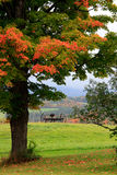 Scenic New England in Autumn royalty free stock images