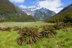 Scenic New Zealand Royalty Free Stock Image