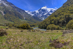 Scenic New Zealand Royalty Free Stock Photography