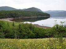 Scenic Newfoundland. Along the coast of Deer lake Newfoundland Royalty Free Stock Images