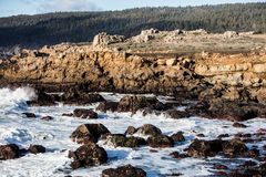 Scenic Northern California Coastline Royalty Free Stock Photos