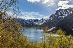Scenic Norwegian fjord Royalty Free Stock Photo