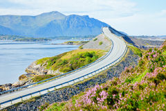 Scenic ocean road Stock Image