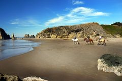 Beach Horse Riding Royalty Free Stock Images