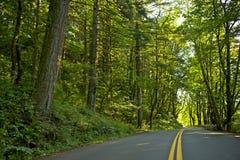 Scenic Oregon Road Royalty Free Stock Photos