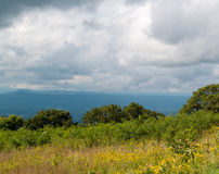 Scenic overlook Shenadoah National Park, Virginia. On a cloudy day with flowered meadow and outlook to rural valley and distant mountains Royalty Free Stock Photo