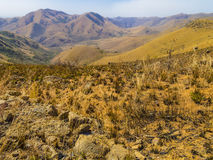 Scenic panorama of the mountains of South Africa Royalty Free Stock Photography