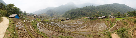 Scenic panorama of rice field terraces Royalty Free Stock Photography
