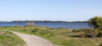 Scenic Panorama  from the walkpath along the Leschenault Estuary Bunbury Western  Australia . The panoramic view of the environment around the  shallow Stock Photo