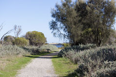 Scenic Panorama  from the walkpath along the Leschenault Estuary Bunbury Western  Australia . Royalty Free Stock Image