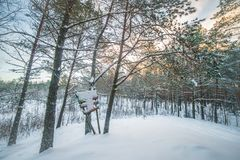 Scenic panoramic winter landscape. Of forest with snow stock photos