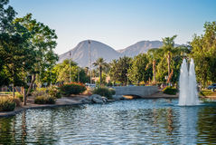 Scenic Park Palm Springs. A scenic municipal park in sunny Palm Springs California royalty free stock image
