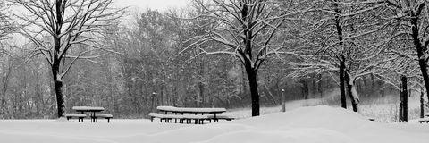 Scenic park in Winter. Black and white wide angled view of snow covered park in Winter Stock Photos
