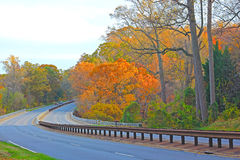 Scenic part of city highway during sunset hours in fall. Motorists travel on the road along the thicket in autumn colorful foliage Stock Photo
