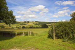 Scenic Patchwork fields in summertime Royalty Free Stock Photography