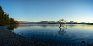 Free Scenic Peaceful Of Lake Wanaka Stock Photo - 154905550