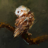 Scenic picture owl sitting on a branch royalty free stock photos