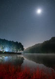 Scenic pine forest light shine with the moon on reservoir at nig Stock Photo