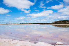 Scenic Pink Salt Lake reflection Australia Royalty Free Stock Photos