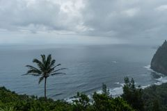 Scenic Pololu Valley vista on a rainy day on the Big Island of Hawaii royalty free stock image