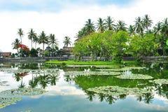 Scenic pond in Bali Stock Photos