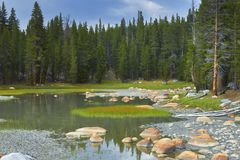 Scenic pond in Yosemite National Park Royalty Free Stock Photography