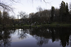 Scenic portrait of trees reflected in water. Scenic winter view of trees reflected in water, taken in Kadriorg park, Tallin, Estonia Stock Images
