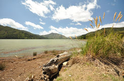 Scenic Queen Charlotte sound Royalty Free Stock Photos