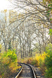 Scenic railroad in autumn Royalty Free Stock Image