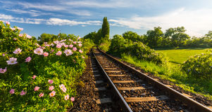 Scenic railroad in remote rural area, on a warm spring day Stock Photos