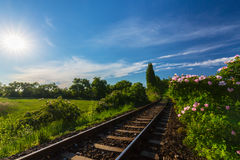 Scenic railroad in remote rural area, on a warm spring day Royalty Free Stock Photography