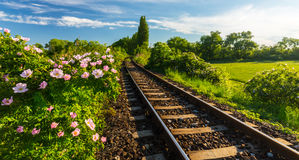 Scenic railroad in remote rural area, on a warm spring day Royalty Free Stock Image