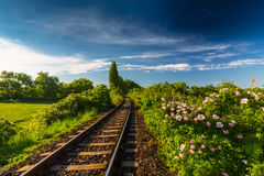 Scenic railroad in remote rural area, on a warm spring day Royalty Free Stock Photo