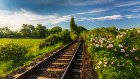 Scenic railroad in remote rural area, on a warm spring day Stock Photography