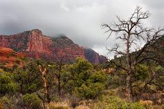 Scenic Red Rocks. Near Sedona, Arizona Stock Images