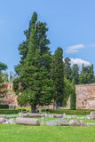 Scenic remains of ruins of the famous Roman Baths of Caracalla (Thermae Antoninianae) Stock Photos