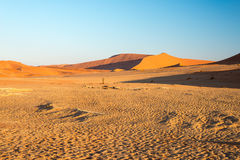 Scenic ridges of sand dunes in Sossusvlei, Namib Naukluft National Park, best tourist and travel attraction in Namibia. Adventure. And exploration in Africa Royalty Free Stock Images
