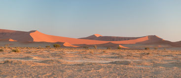 Scenic ridges of sand dunes in Sossusvlei, Namib Naukluft National Park, best tourist and travel attraction in Namibia. Adventure. And exploration in Africa Royalty Free Stock Photo