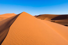 Scenic ridges of sand dunes in Sossusvlei, Namib Naukluft National Park, best tourist and travel attraction in Namibia. Adventure. And exploration in Africa Stock Image