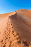 Scenic ridges of sand dunes in Sossusvlei, Namib Naukluft National Park, best tourist and travel attraction in Namibia. Adventure. And exploration in Africa Royalty Free Stock Image