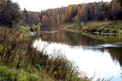 Scenic river in autumn Royalty Free Stock Photo