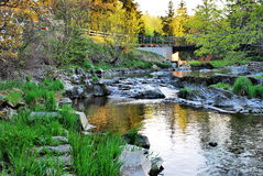 Scenic river in countryside Royalty Free Stock Photos